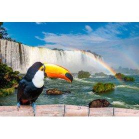 Alojamiento en Iguazú para Semana Santa, 3 noches para 2,3 ó 4 personas